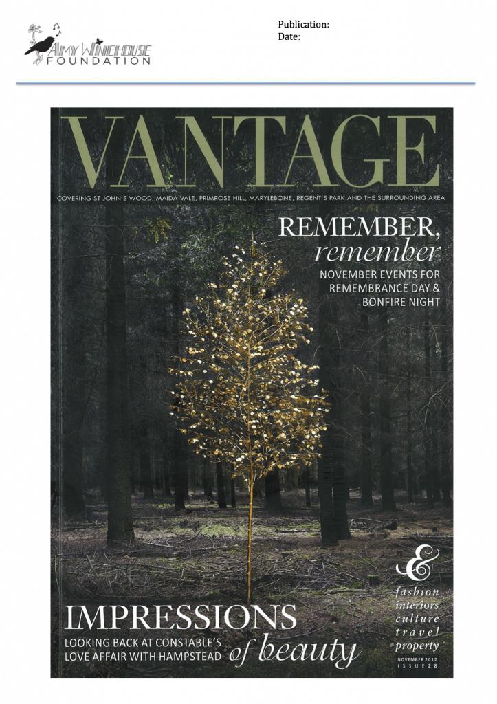 Vantage November 2012.1